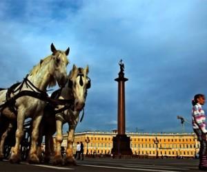 Петербург потратит 20 миллионов на проведение фестиваля альтернативной музыки
