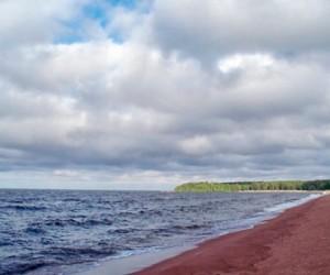 Роспотребнадзор: в Петербурге нельзя не только купаться, но и загорать