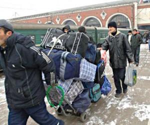 В Пушкине обнаружен лагерь для нелегальных мигрантов