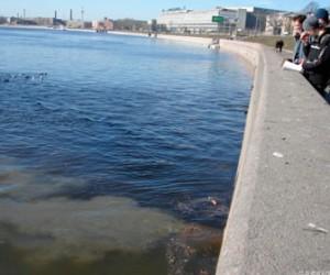Экологи меньше чем за пол часа смогли избавиться от загрязнения Невы