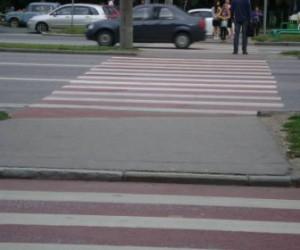 В Спб должны обустроить пешеходные переходы для инвалидов