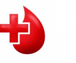 Фанаты «Зенита» сдали кровь