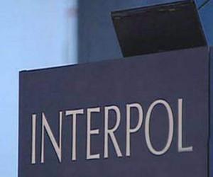 В Спб сотрудники Интерпола задержали молдаванина, который находился в международном розыске