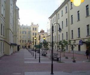 В Спб будут бороться против «засорения павильонами» Малой Садовой улицы