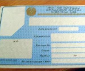В Спб были задержаны участники ОПГ, которые занимались подделкой миграционных документов