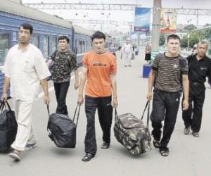 Смольный: В Петербурге порядка полумиллиона мигрантов, половина из которых работает на легальных основаниях