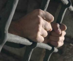 Похищенная в Купчино Mazda вывела оперативников на банду, занимавшуюся угоном