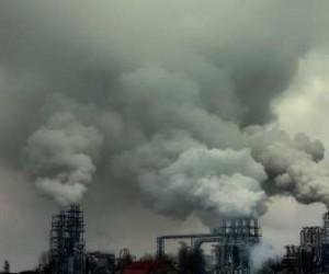 Greenpeace выступил против строительства в Петербурге мусоросжигательных заводов