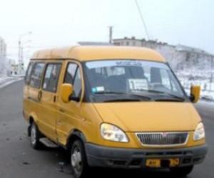 В Петергофе пассажир маршрутного автобуса ограбил водителя