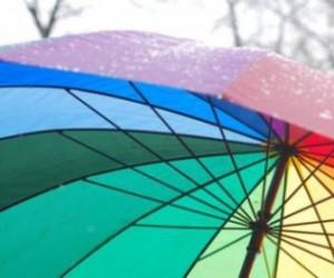 У Мариинского дворца пройдут пикеты ЛГБТ-сообщества