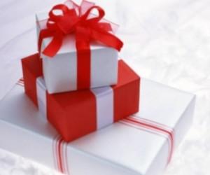 В Смольный не пускают посетителей с подарками