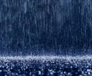 В Питере на следующей недели ожидают снег с дождем