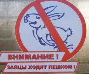 За езду без билета в общественно транспорте поднимут штрафы до пятисот рублей