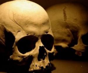 На проспекте Обуховской Обороны выставлен череп человека