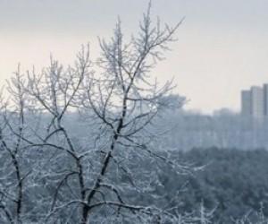 Завтра синоптики обещают в Санкт-Петербурге потепление