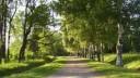 В парке Пушкино найден скелет