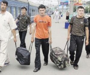 Штрафы за нарушения повысили для мигрантов Москвы и Петербурга