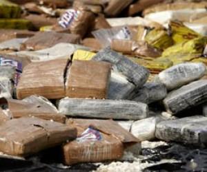 В одном из питерских автобусов нашли 55 кг гашиша