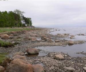 Летом откроют пляжи Курортного района