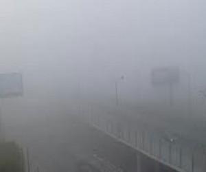 Сильный туман в Пулково
