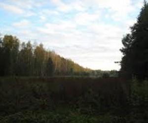 Особая природная территория в долине реки Поповки