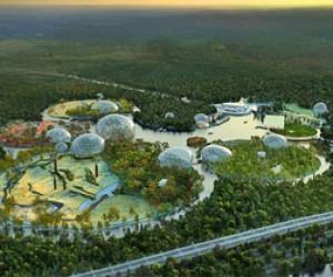 В Питере построят новый зоопарк?