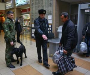 В Петербурге начал действовать план «Анаконда»