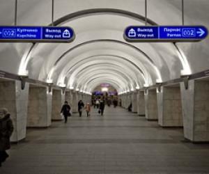 Женщина выжила после падения на рельсы в метро Петербурга