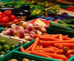 Проверки на складах плодоовощной продукции