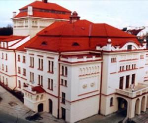 Литовский театр отменил гастроли в Петербурге