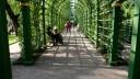 Выбран подрядчик, который отремонтирует Летний сад