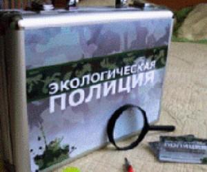 На территории Петербурга планируют создать экологическую полицию