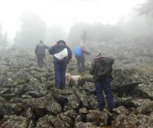 Питерский турист пропал в республике Алтай