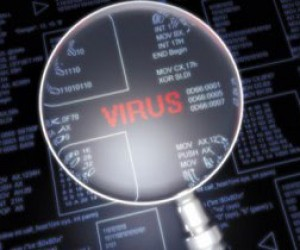 Два подростка взломали сайт крупного интернет-магазина