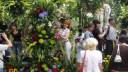 В Александровском саду стартует фестиваль цветов