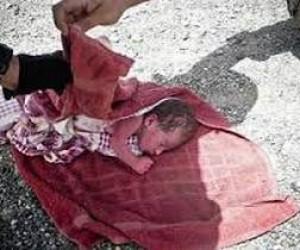 В Ленинградской области нашли тело ребёнка без части черепа