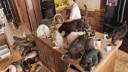 В Петербурге 16-летний подросток совершил самоубийство из-за домашних животных
