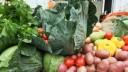 В магазинах Петербурга будут продавать овощи и фрукты из Ленобласти