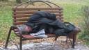 В Питере начнет работу пункт учета бездомных
