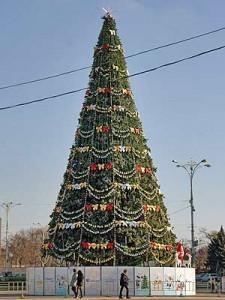 На Дворцовой начали украшать главную городскую елку