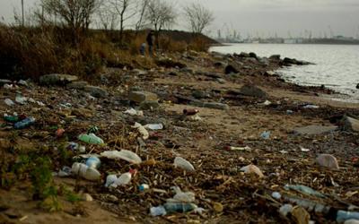 Петербургская администрация выплатит штраф за несоблюдение водоохранного законодательства