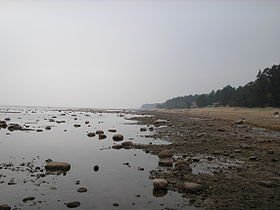 Москва поможет Петербургу спасти берега Финского залива
